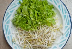 resepi gado gado jawa indonesia taugeh saderi cina