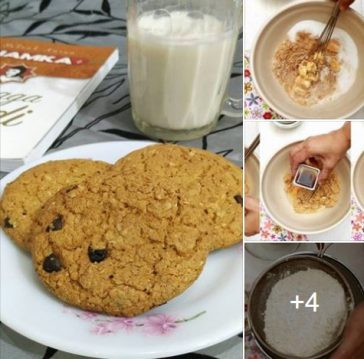 resepi biskut oat chocolate chip cookies subway diet 00